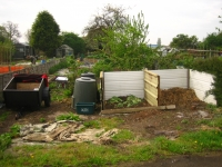 Top of Allotment May 2008